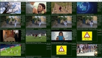 Video Mosaic Software for Personal Stream Tool